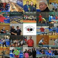 Edmonton Table Tennis Club:  Who We Are